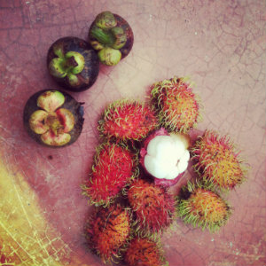 Mangoustan, destinataion Malaisie - Feuille de choux