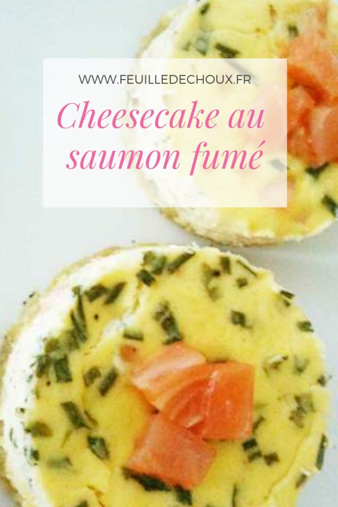 Cheesecake salé au saumon fumé 1