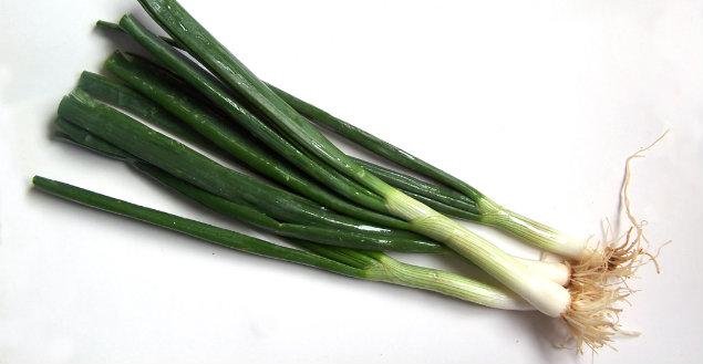 Poireau, les recettes de poireau - Feuille de choux